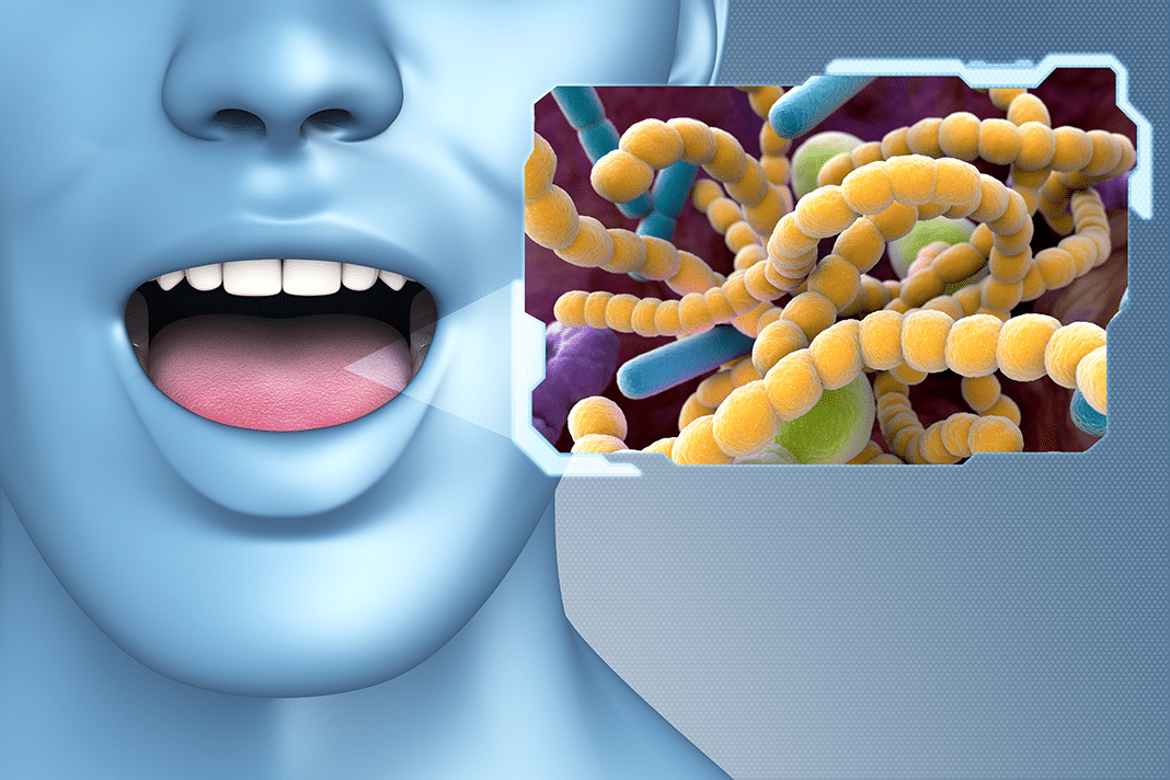 Illustration of the mouth's microbiome