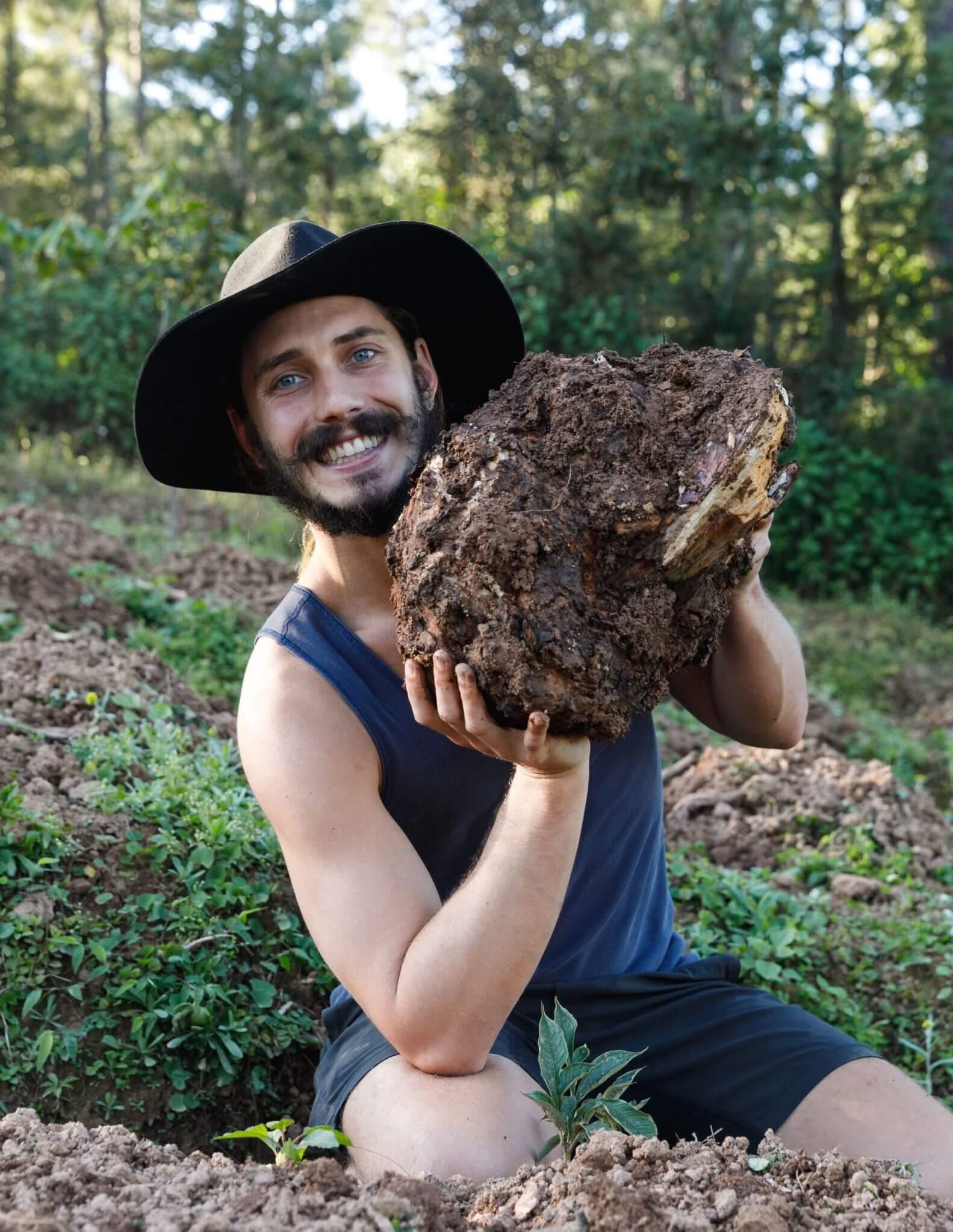 Mason Taylor harvesting Chaga Mushrooms in a forrest
