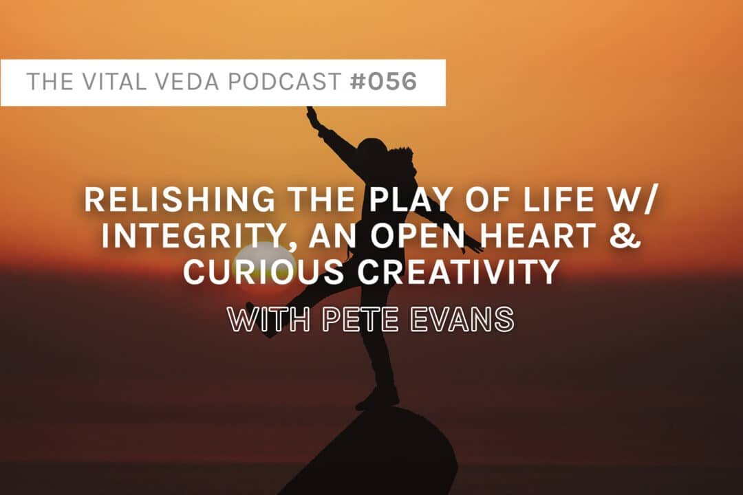 Pete Evans' Podcast Banner